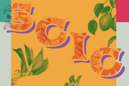 SCIC – Spettacoli e Cultura in cortile: la rassegna primavera / estate 2018 della Casa del Quartiere!